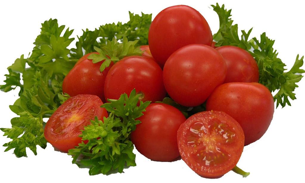 tomati kasvatamine kasvuhoones