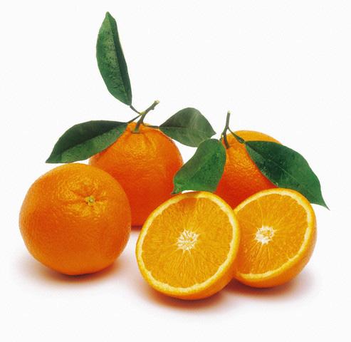 apelsinipuu kasvatamine