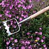 Kõbla Royal Dutch aiatööriistad