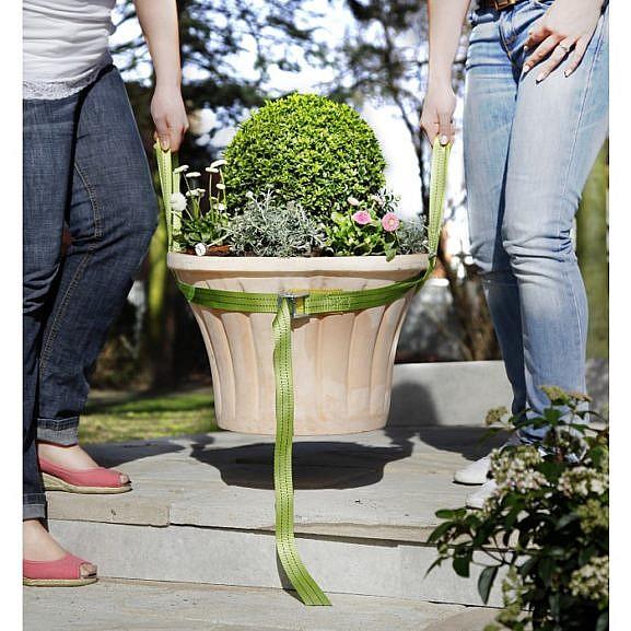 taimede-kanderihm_1