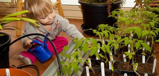 Kasvuhoone on lastele heaks eeskujuks ja mänguliseks õppimise kohaks
