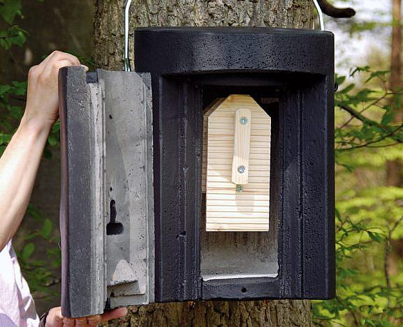nahkhiirte talvitumiskast 1FW_02