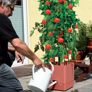 Lillepotid ja taimekonteinerid