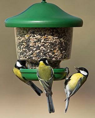 linnusöögimajad ja söötjad
