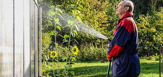 kasvuhoone hooldustööd sügisel