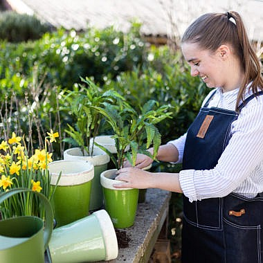 aiatööriided