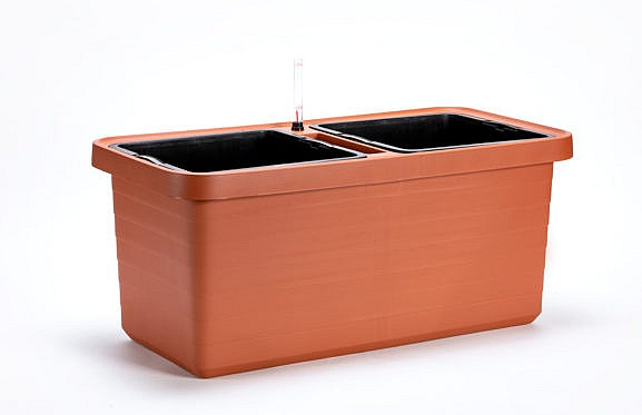 Kasvatuse konteiner Berberis_013